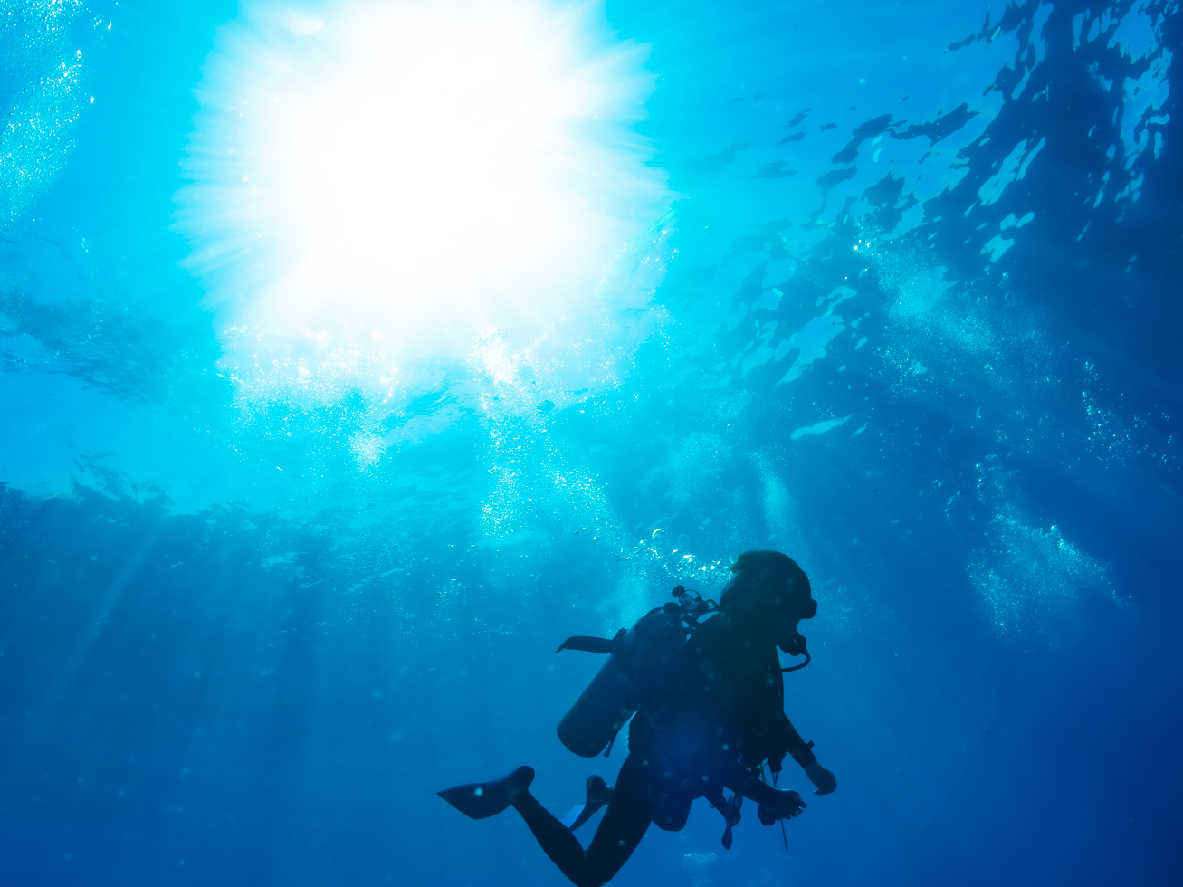 Scuba DivingのScubaってどういう意味?