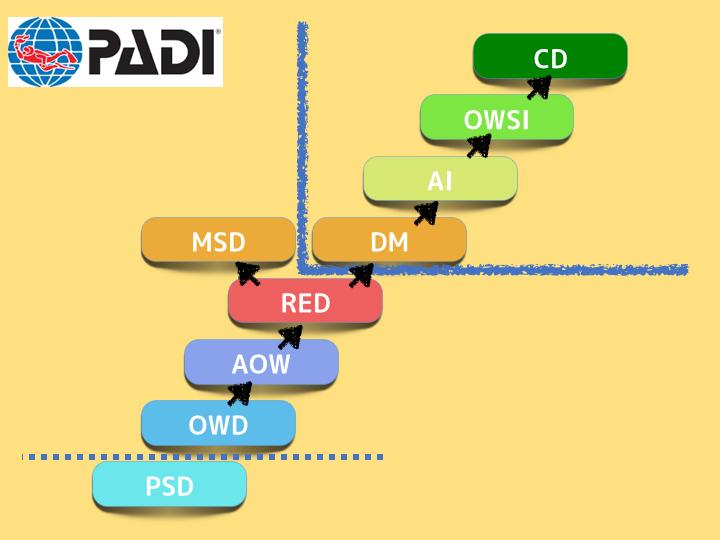 padi_skill_up.001