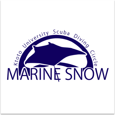【サークル紹介Vol.15】京都大学Marine Snow