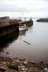 bay_of_fundy_high_tide
