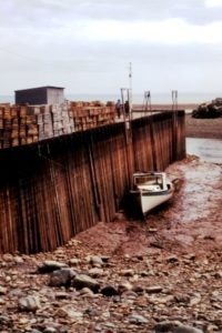 bay_of_fundy_low_tide