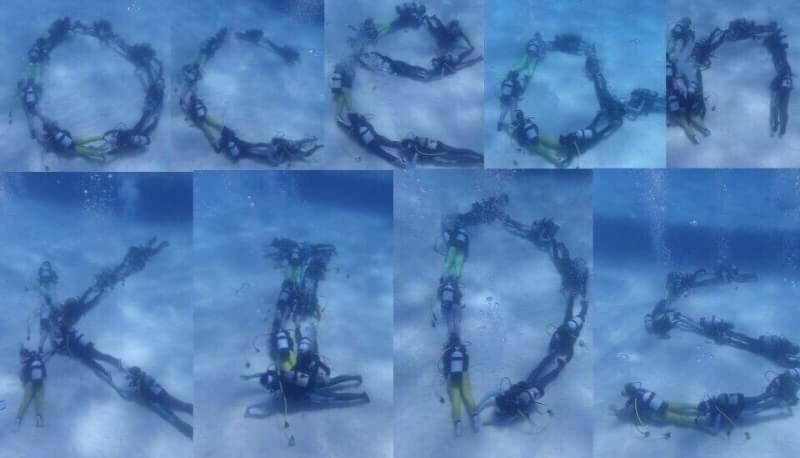 【サークル紹介2019vol4】Ocean KIDs