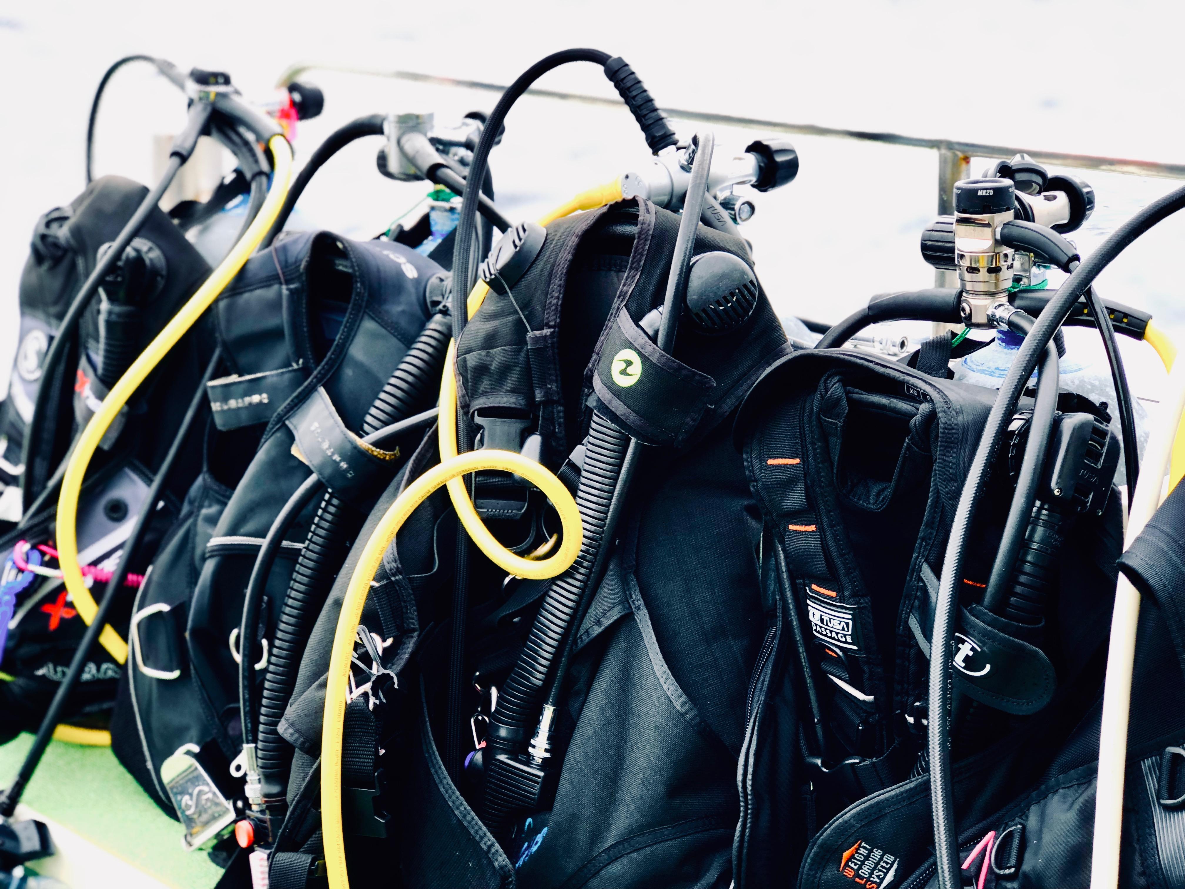 【海猿!?】潜水士の資格を取るのは難しくないってホント!?