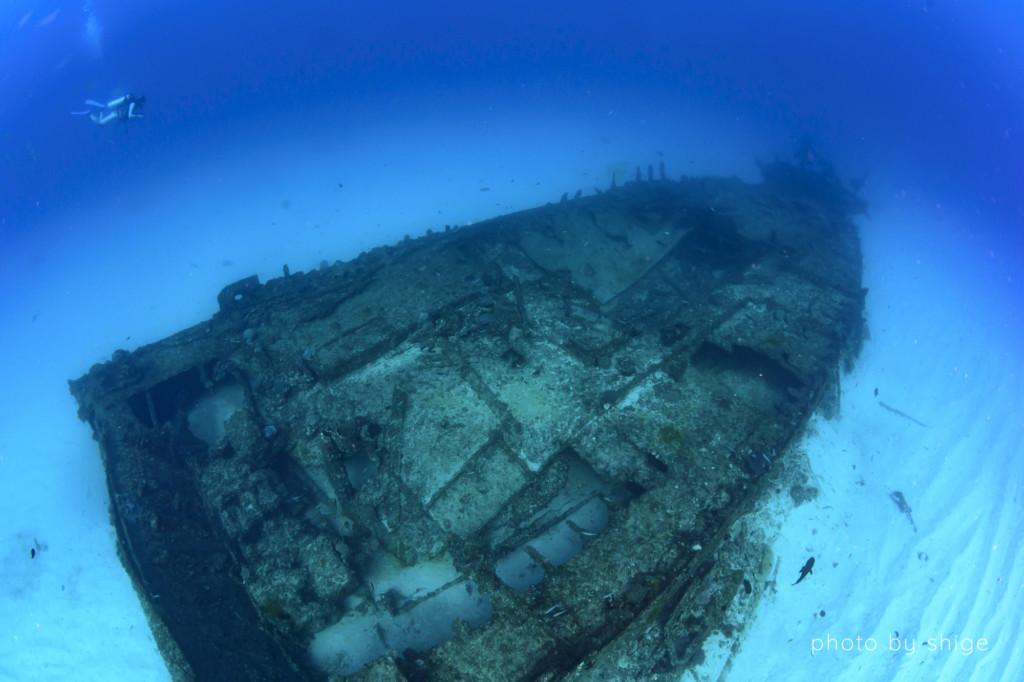 ザトウクジラに出会ったポイント「蓬莱根(ほうらいね)の沈船」