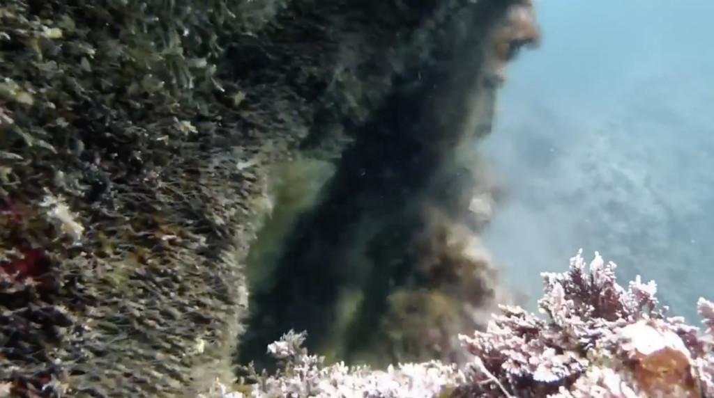 堂ヶ島サク根の海中温泉