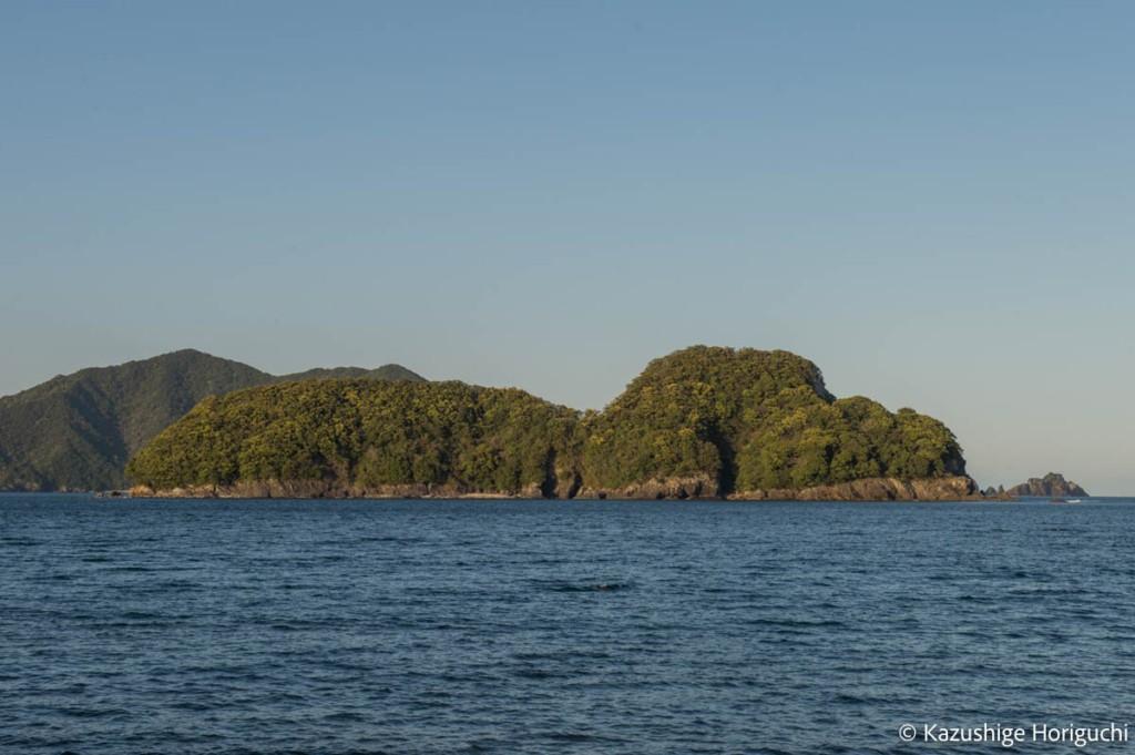 ムーミンのような形をしている佐波留島
