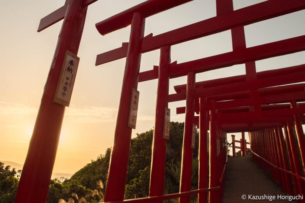 元乃隅神社の鳥居はくぐることも可能